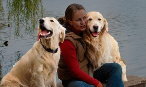 Cómo lidiar con la pérdida de un perro