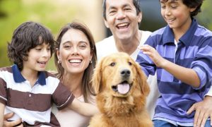 ¿Cuáles son los beneficios de contar con una mascota en la familia?